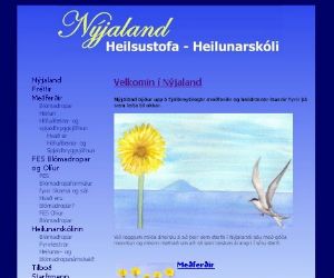 Thumbnail image for Njaland opnar njan vef